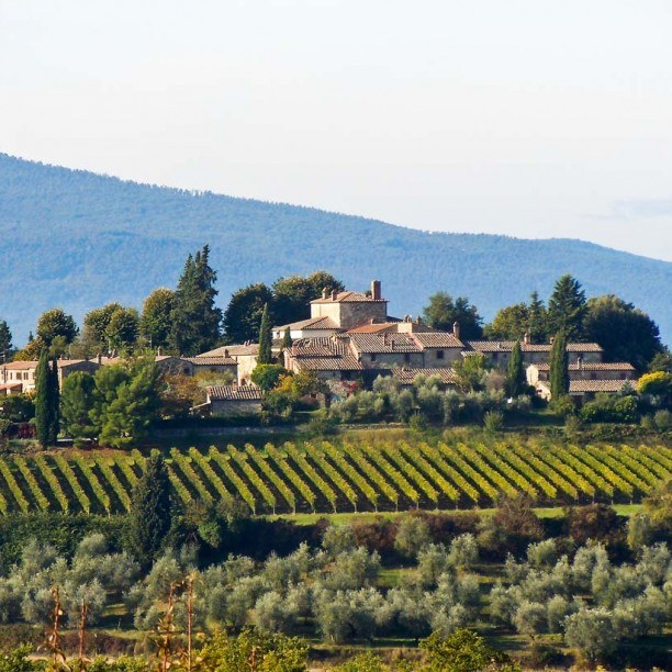Highlights from from Tuscany Explorer