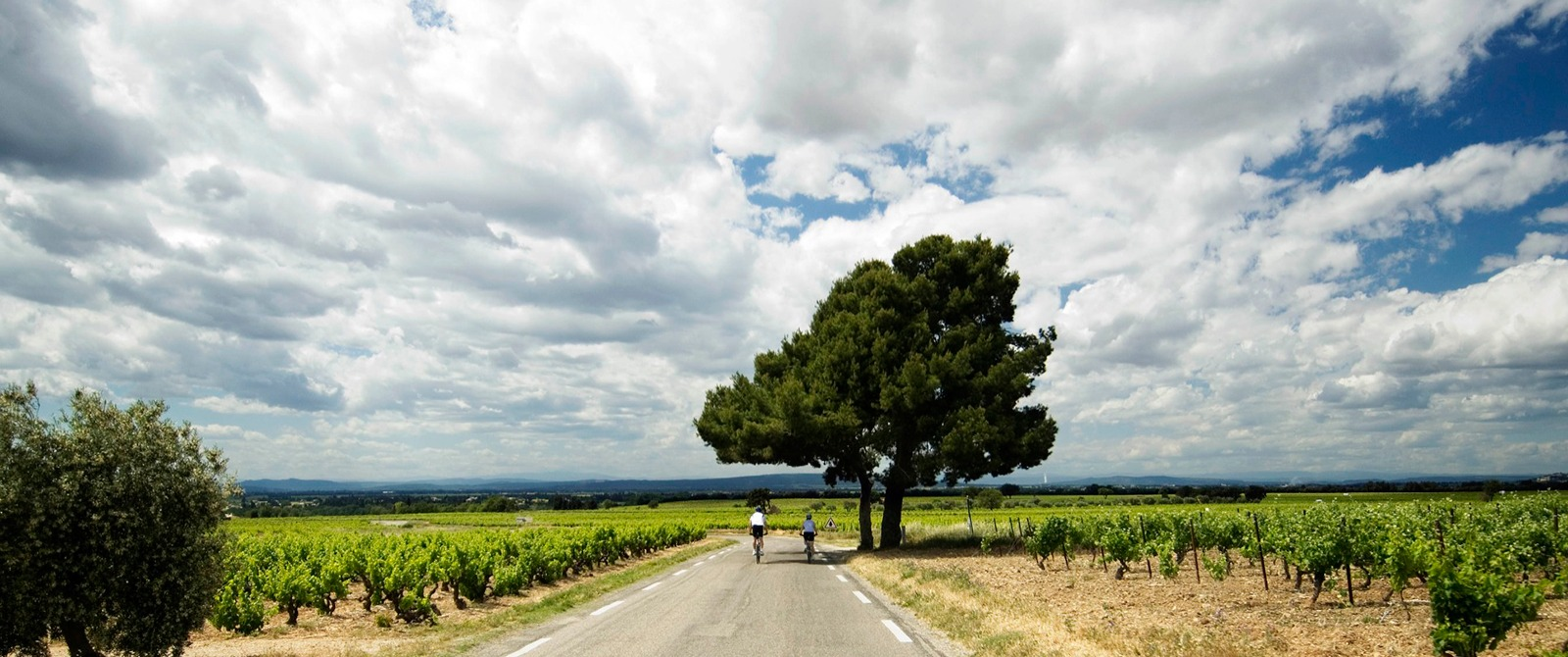 Provence Bike Tours Amp Bicycle Vacations
