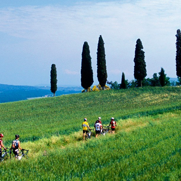 View full trip details for Tuscany Explorer