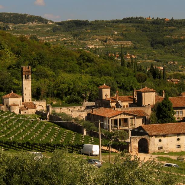 View full trip details for Veneto Custom