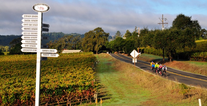 Roll along the wine country of Healdsburg with Trek Travel