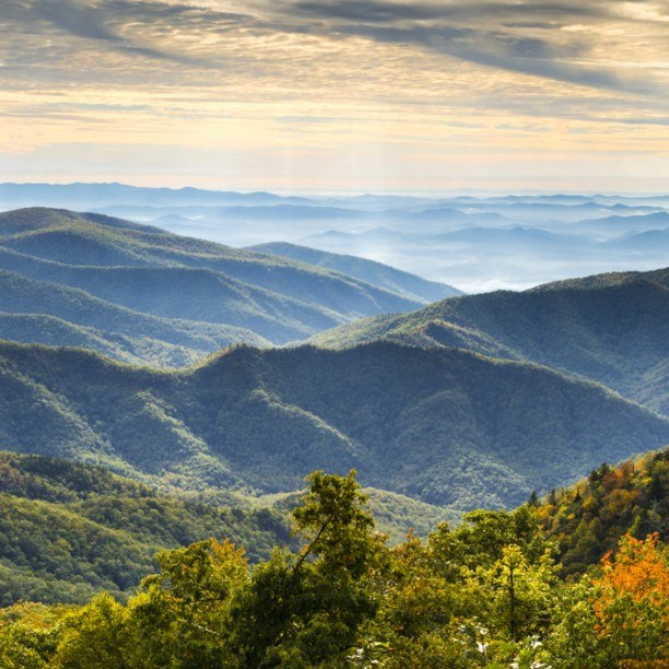 View full trip details for Asheville to Brevard