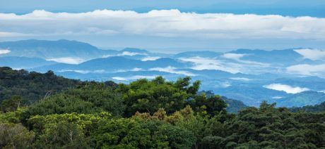Costa Rica's Cloud Forest
