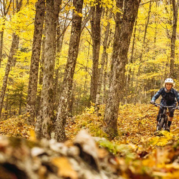 View full trip details for Vermont Kingdom Trails
